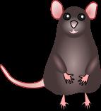 :ratstand: