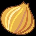 :onion: